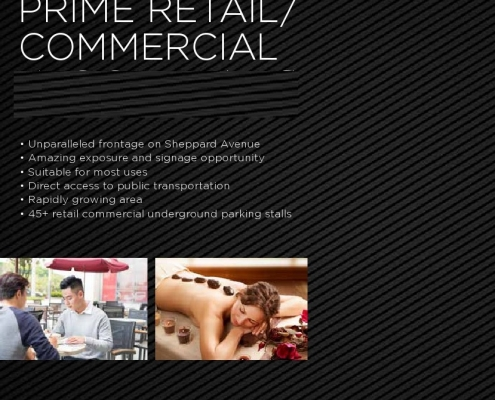 Vida Commercial